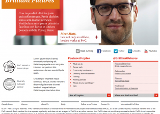 pwc-brilliant-futures-homepage